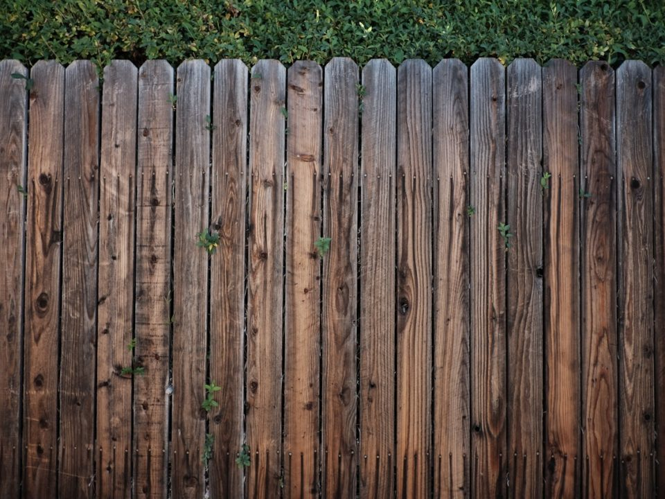Wood Fence Care Tips